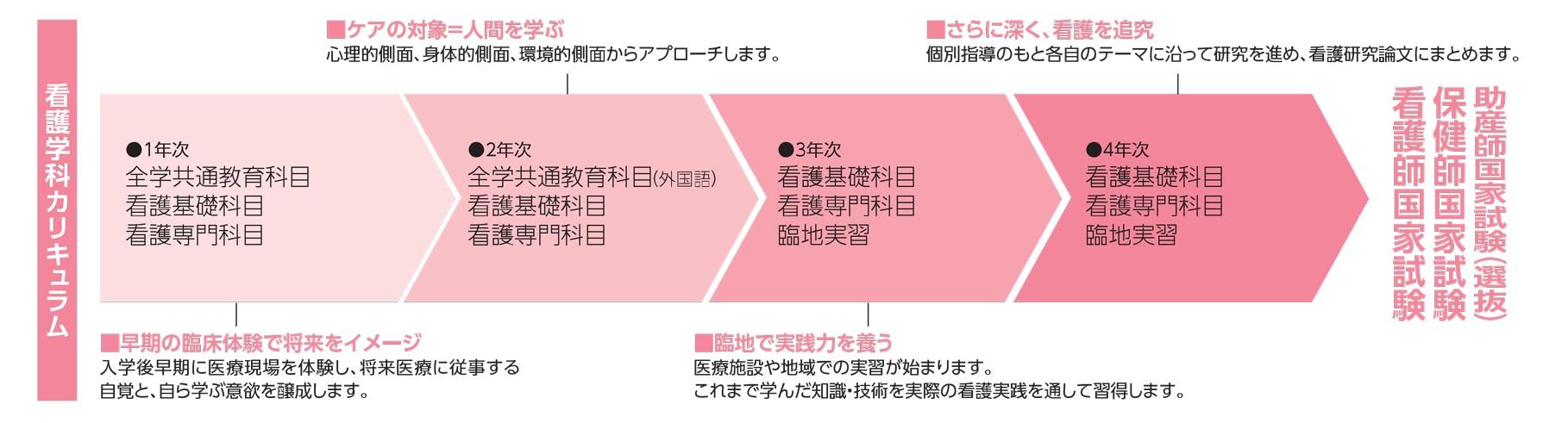 看護学科カリキュラムチャート図