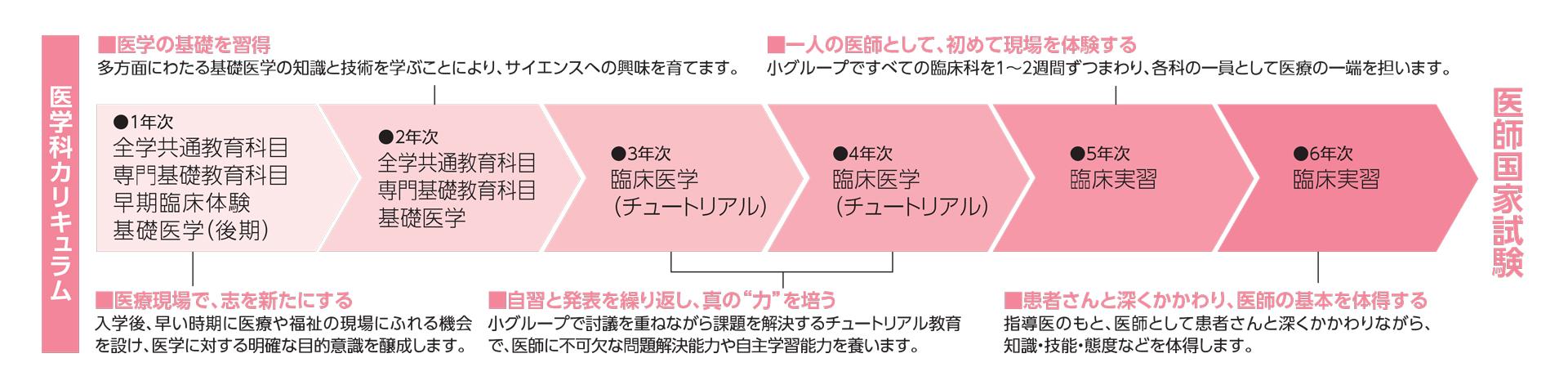 医学部カリキュラムチャート図